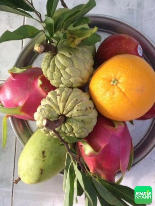 Mâm trái cây cúng rằm
